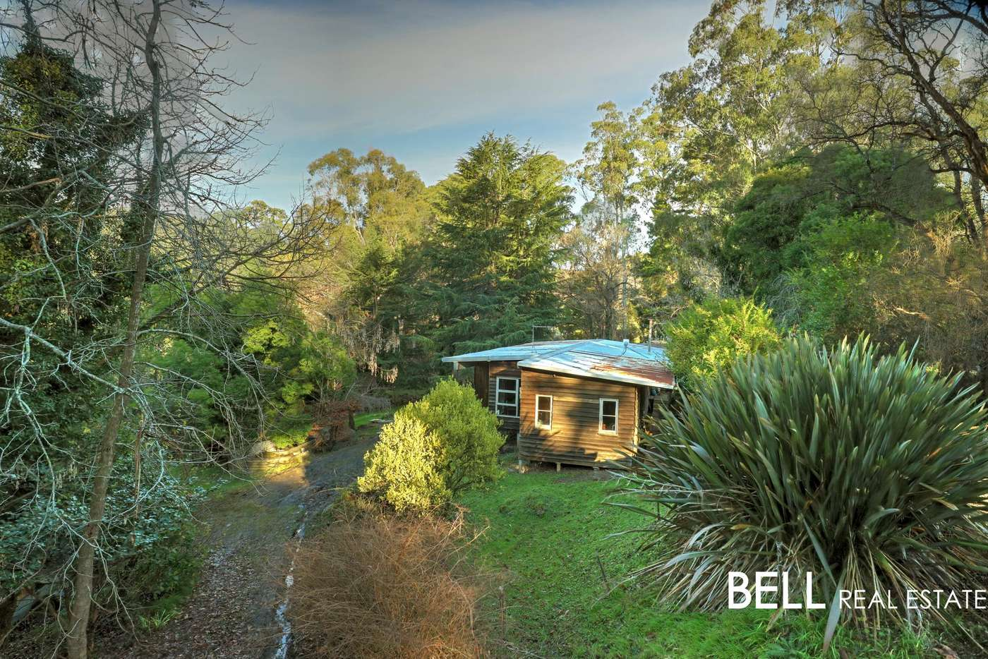 Main view of Homely house listing, 15 Daveys Lane, Hoddles Creek VIC 3139
