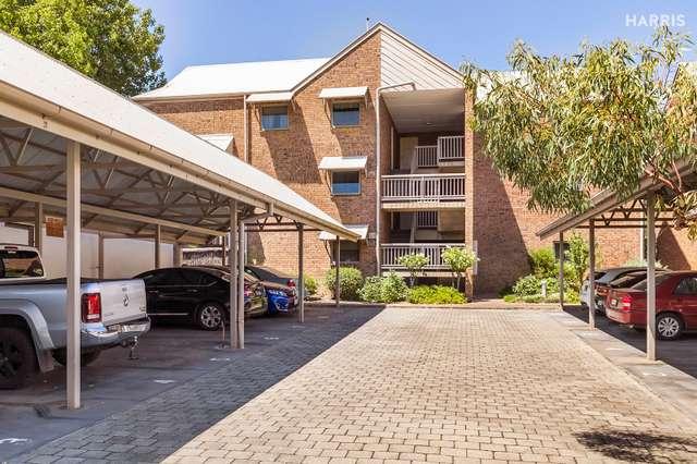 7/355A Angas Street, Adelaide SA 5000