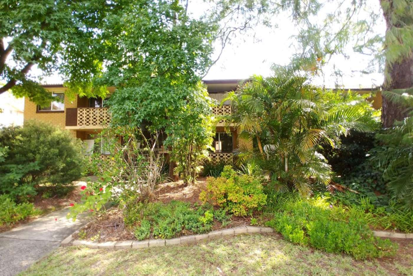 Main view of Homely apartment listing, 6/496-500 Mowbray Rd, Lane Cove NSW 2066