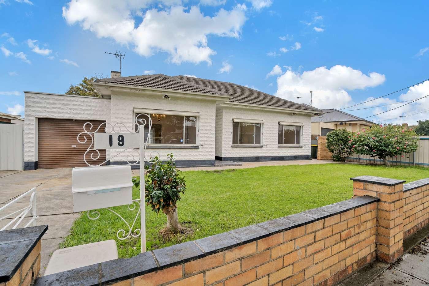 Main view of Homely house listing, 19 Minerva Crescent, Croydon Park SA 5008
