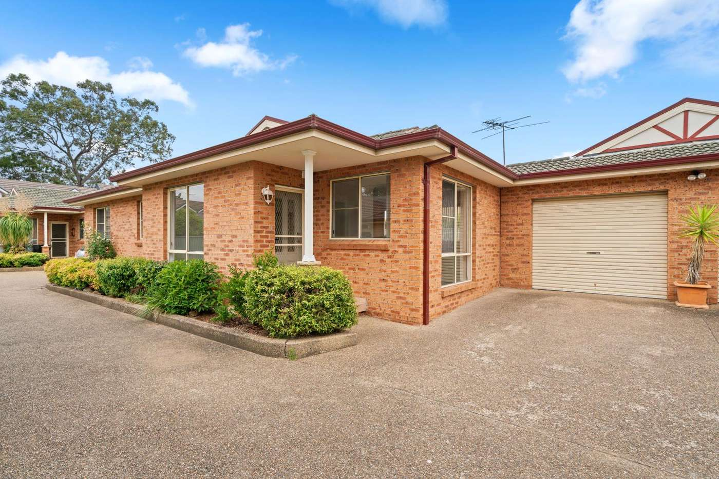 Main view of Homely villa listing, 2/79 Uranus Road, Padstow, NSW 2211