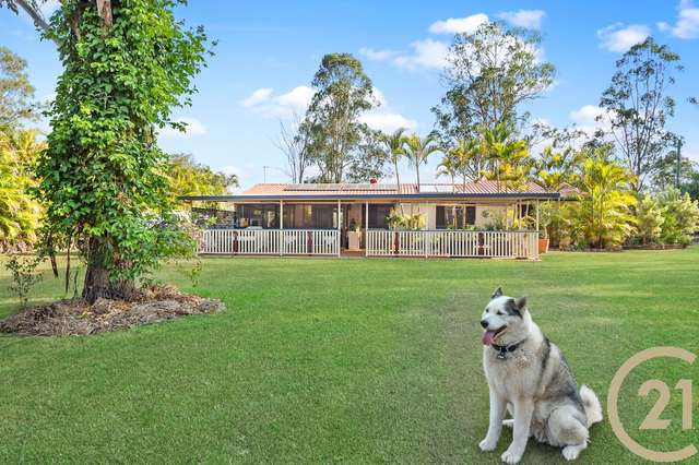 558 Caboolture River Road