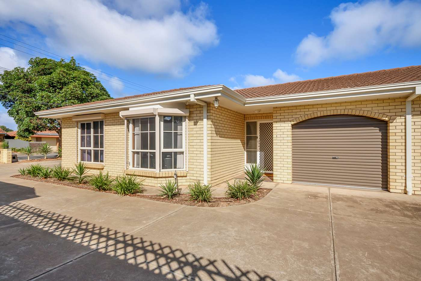 Main view of Homely unit listing, 1/14 Strathmore Terrace, Brighton SA 5048