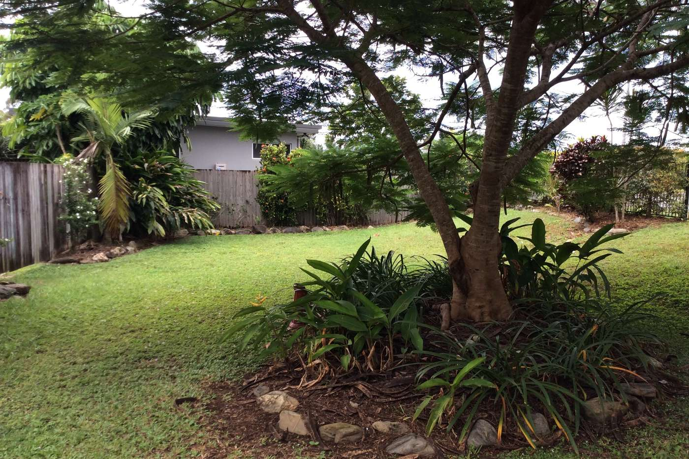 Sixth view of Homely house listing, 37 Cooya Beach Road, Cooya Beach QLD 4873