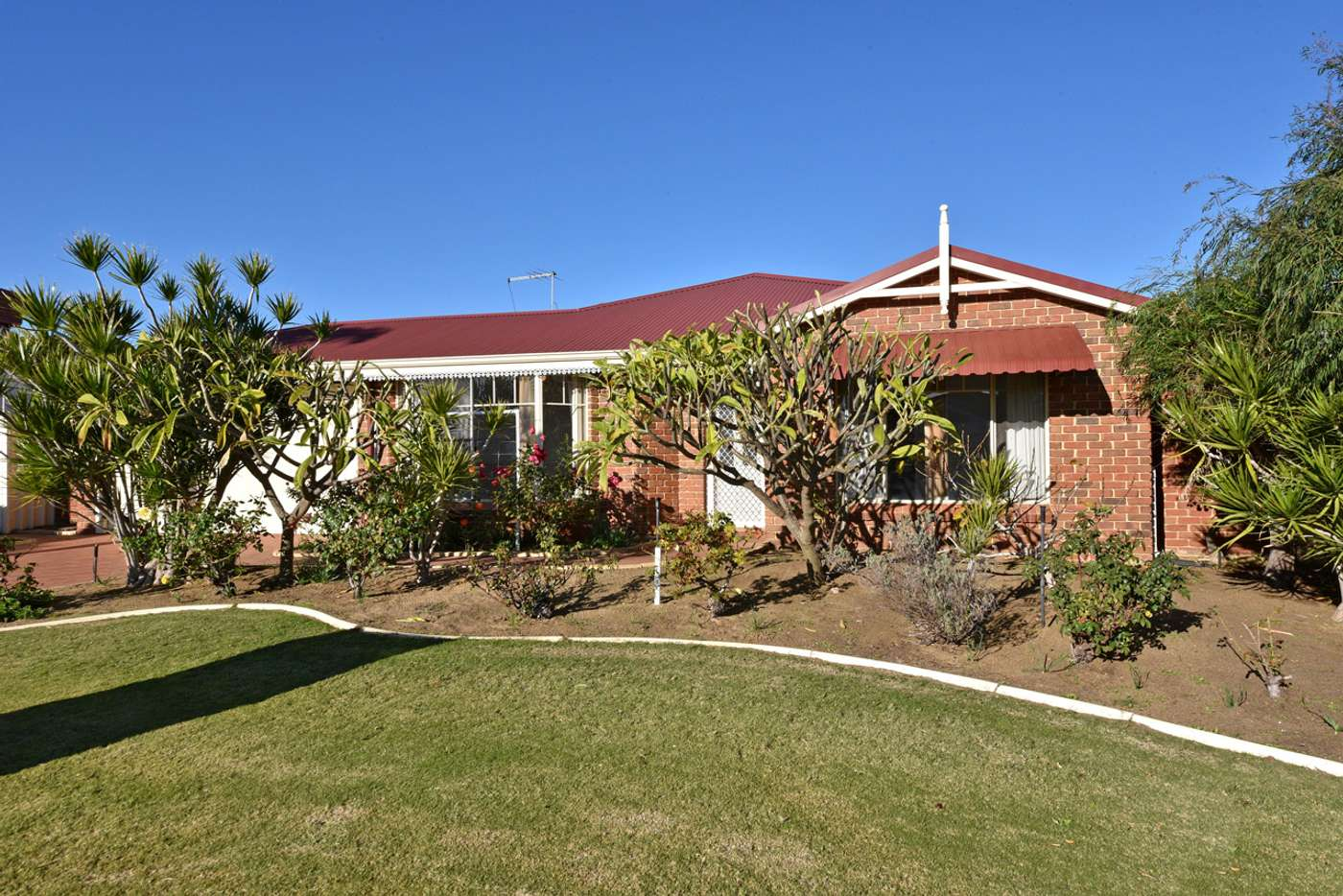 Main view of Homely house listing, 8 Alliance Court, Currambine WA 6028