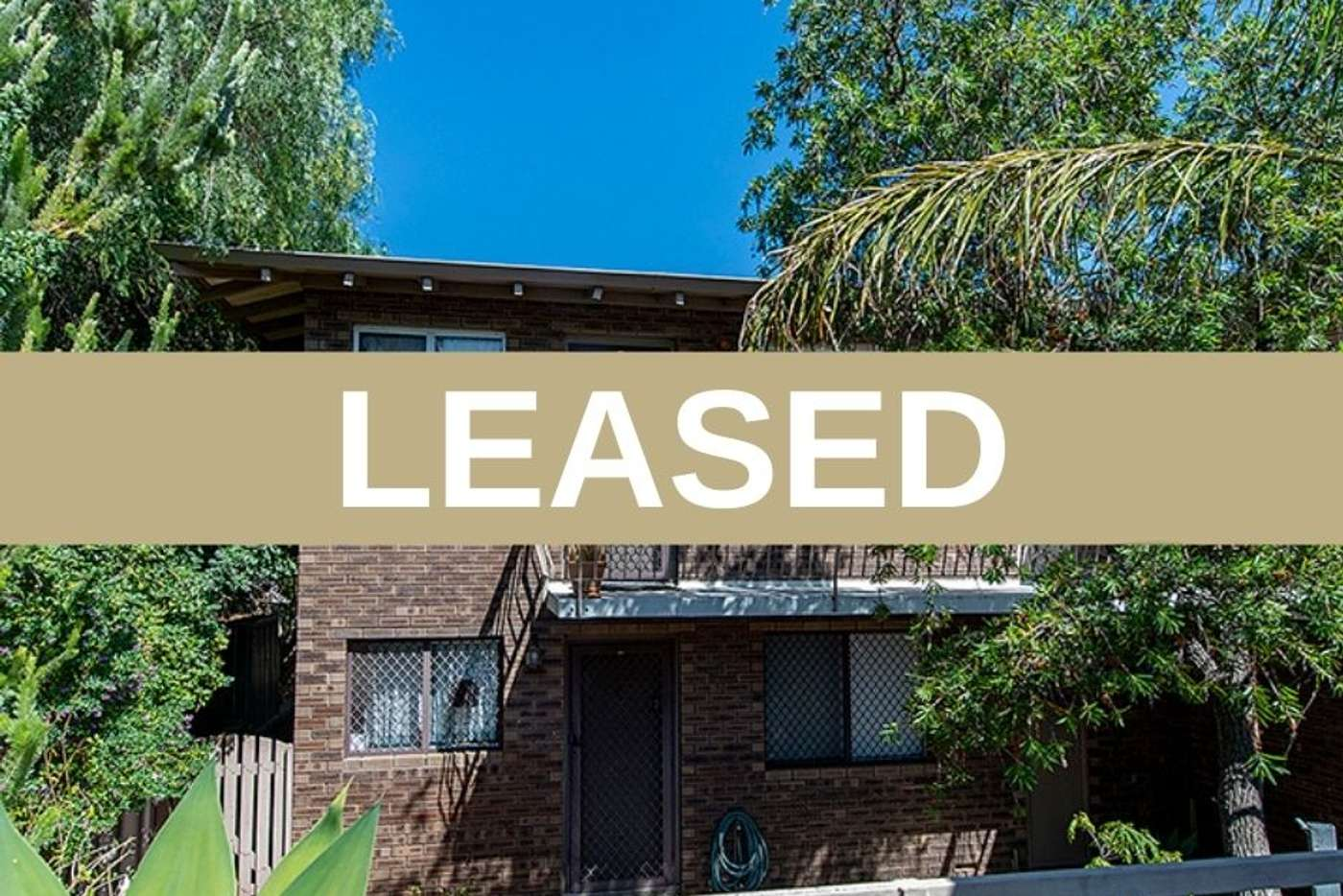Main view of Homely apartment listing, 12/21 Storthes street, Mount Lawley WA 6050
