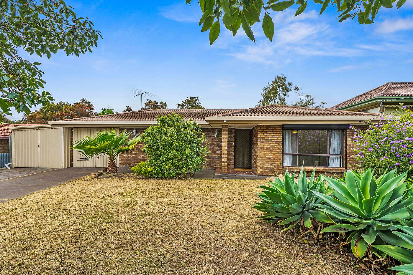 Main view of Homely house listing, 6 Timothy Road, Morphett Vale SA 5162