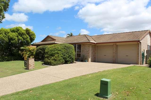 42 Mountain Ash Drive, Mountain Creek QLD 4557