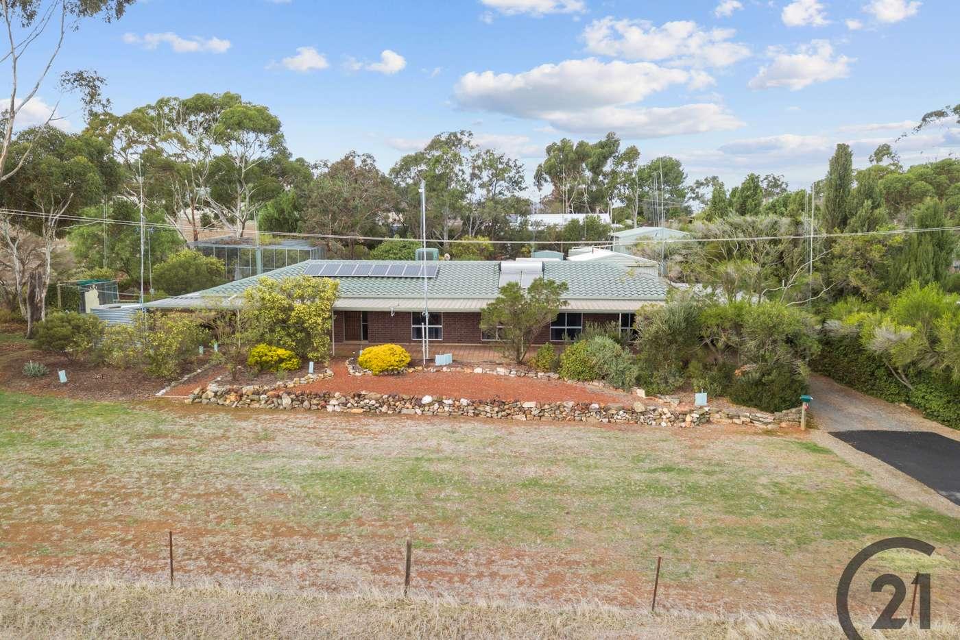 Main view of Homely house listing, 23 Fuller Street, Kapunda SA 5373
