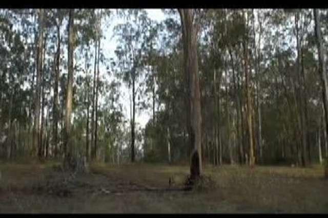 100 Deephouse Road, Bauple QLD 4650