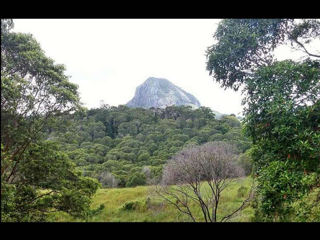 Main view of Homely  listing, 201 Schreibers Road, Cooran, QLD 4569