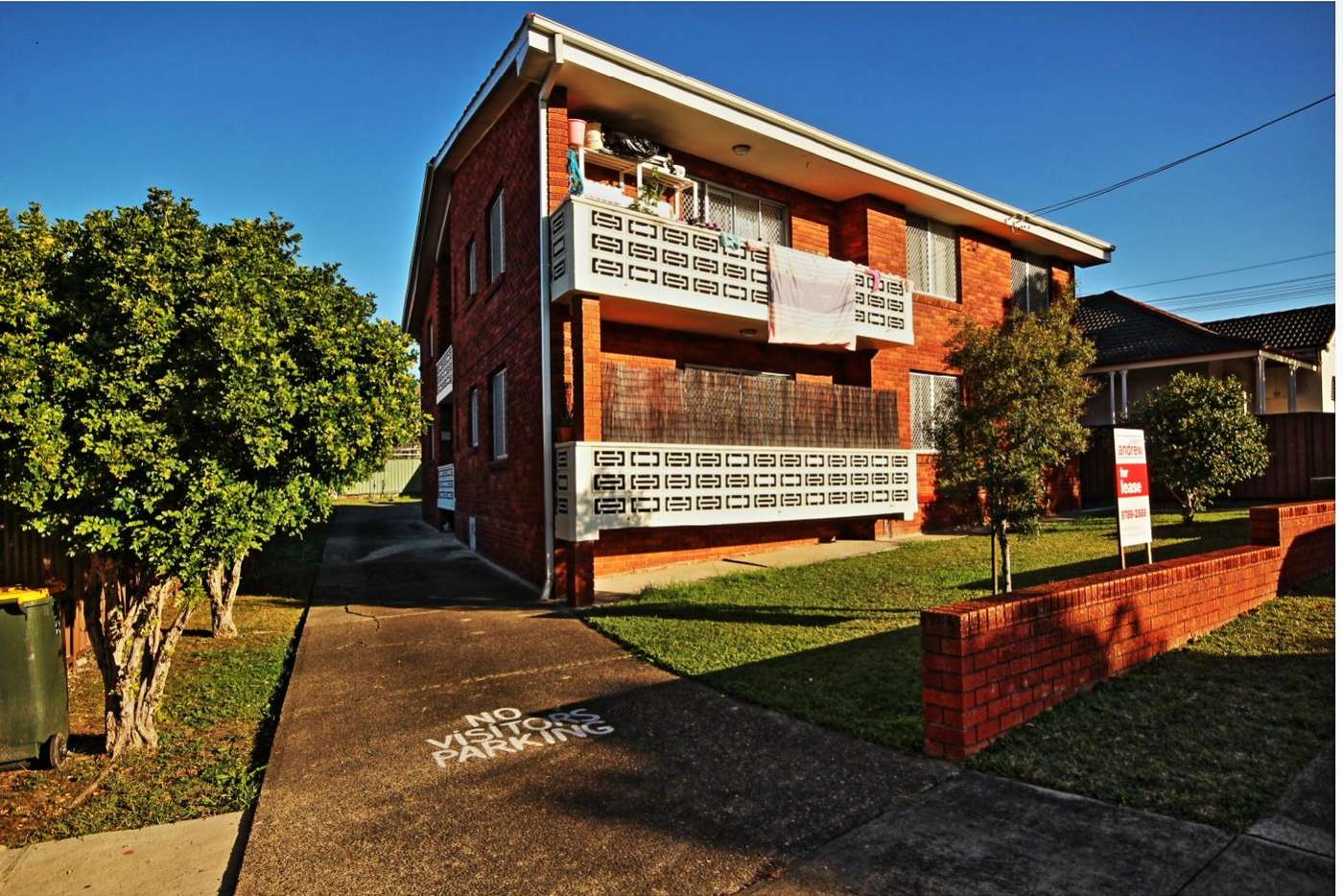 Main view of Homely unit listing, 14 Beaumont Street, Campsie NSW 2194