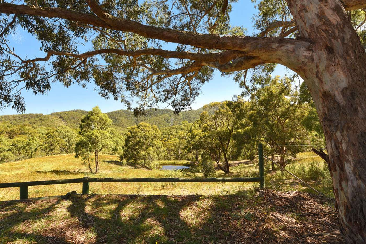 Main view of Homely acreageSemiRural listing, 310 Sir Thomas Mitchell Drive, South Bowenfels NSW 2790
