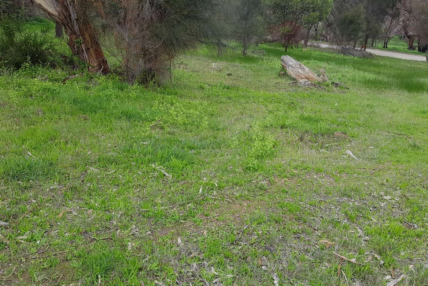 Seventh view of Homely residentialLand listing, LOT 18 Thomas Road, American River SA 5221
