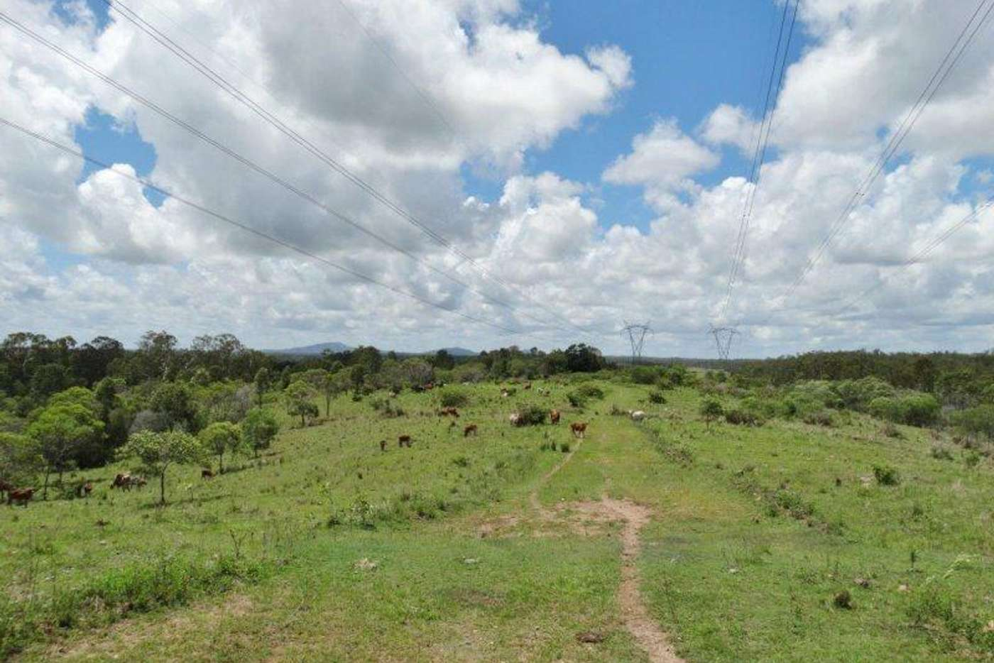 Seventh view of Homely ruralOther listing, 755 Hills Road, Mount Maria QLD 4674