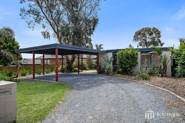 9 Eucalyptus Walk, Carrum Downs VIC 3201