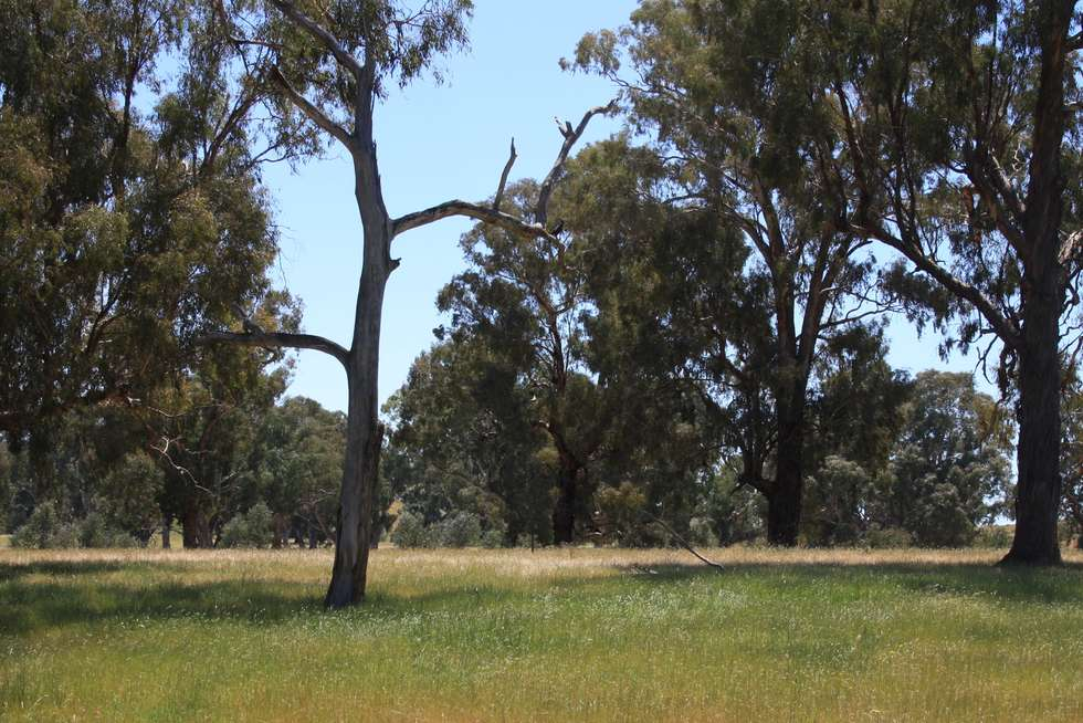 Third view of Homely residentialLand listing, 41 Lawsons Lane, Mansfield VIC 3722
