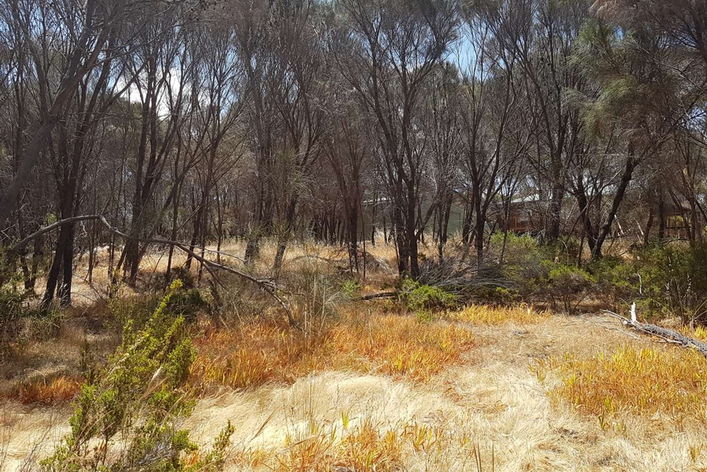 Sixth view of Homely residentialLand listing, LOT 51 Bayview Road, American River SA 5221