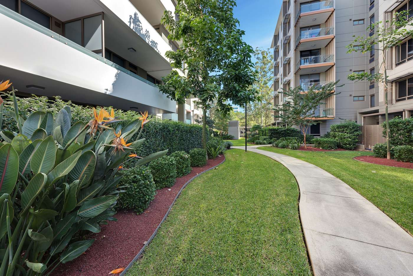 Fifth view of Homely apartment listing, 105/1-9 Alma Road, Macquarie Park NSW 2113