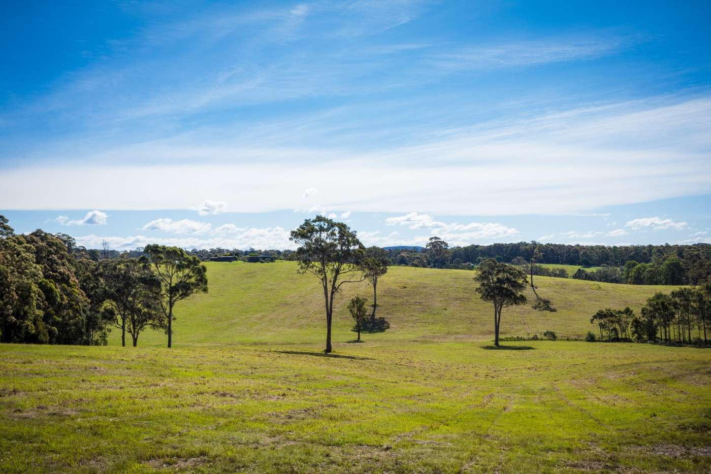 Fifth view of Homely mixedFarming listing, 7514 Princes Highway, Narooma NSW 2546
