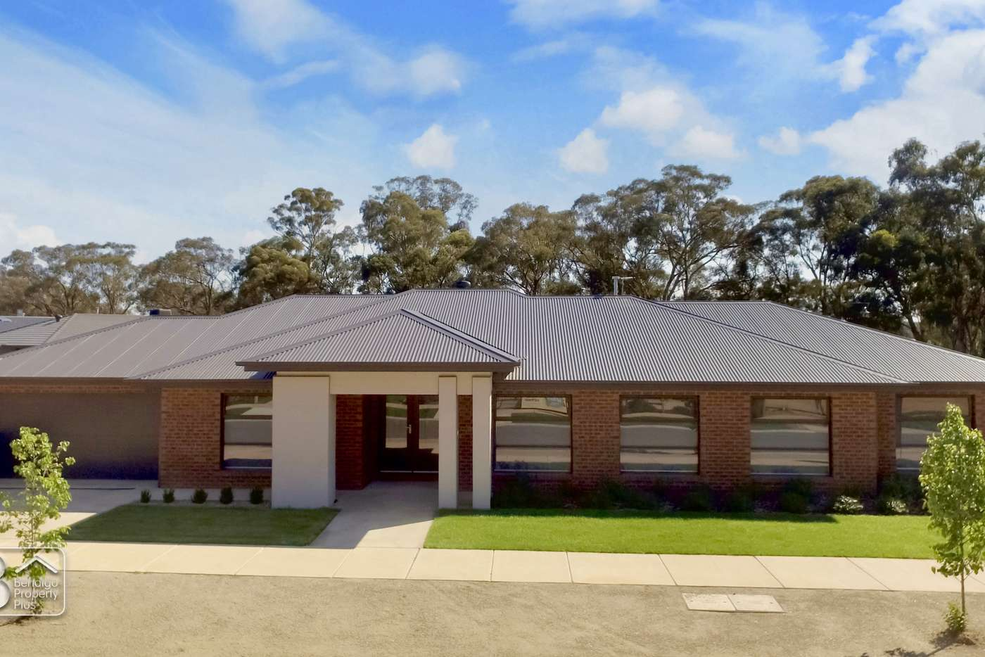 Main view of Homely house listing, 16 Pippin Grove, Maiden Gully VIC 3551