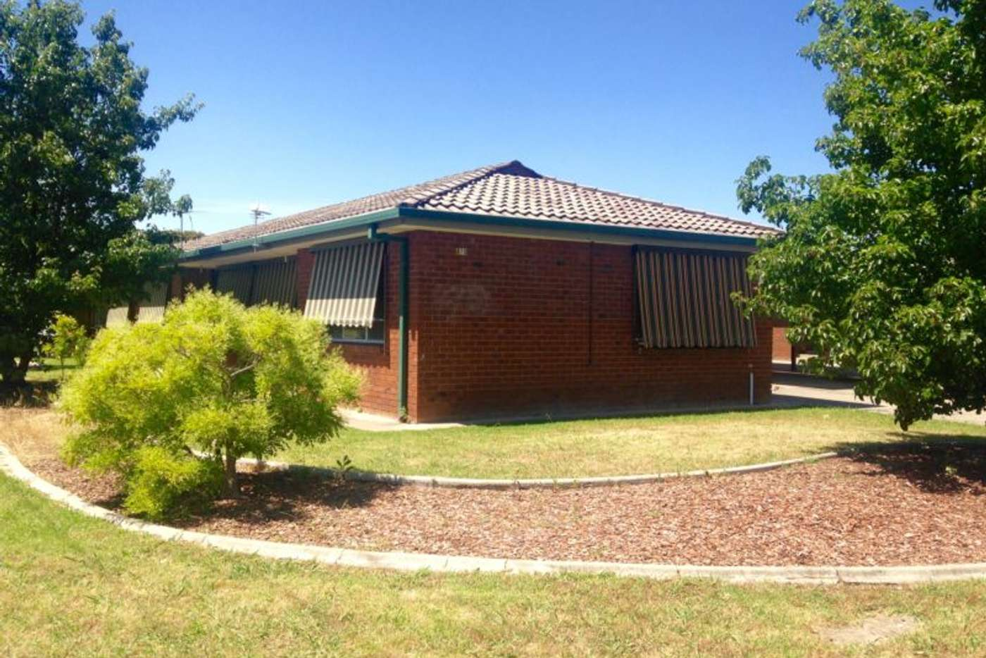 Main view of Homely unit listing, 1/470 Henderson Street, Lavington NSW 2641