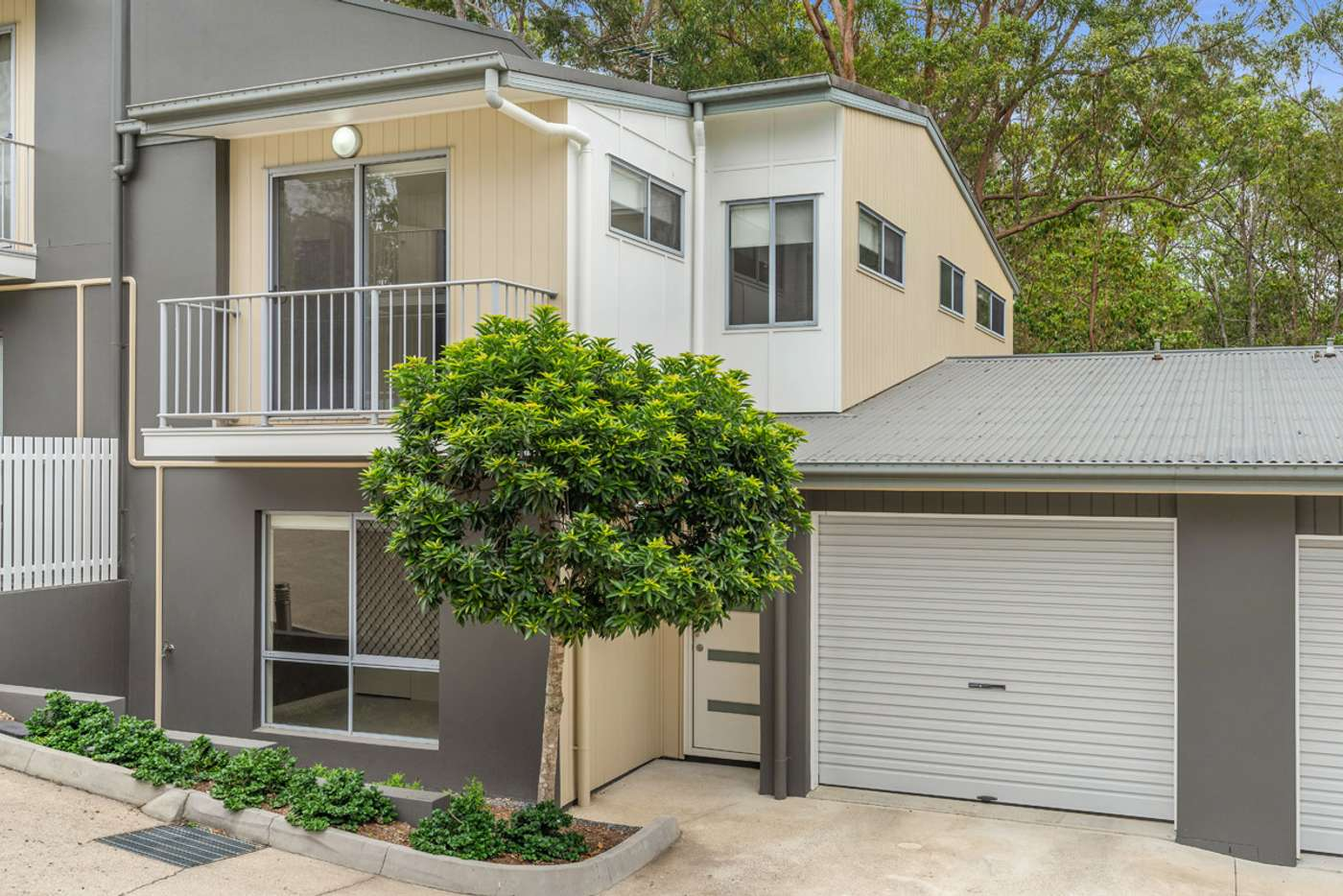 Main view of Homely townhouse listing, 6/276 Pine Mountain Road, Carina Heights QLD 4152