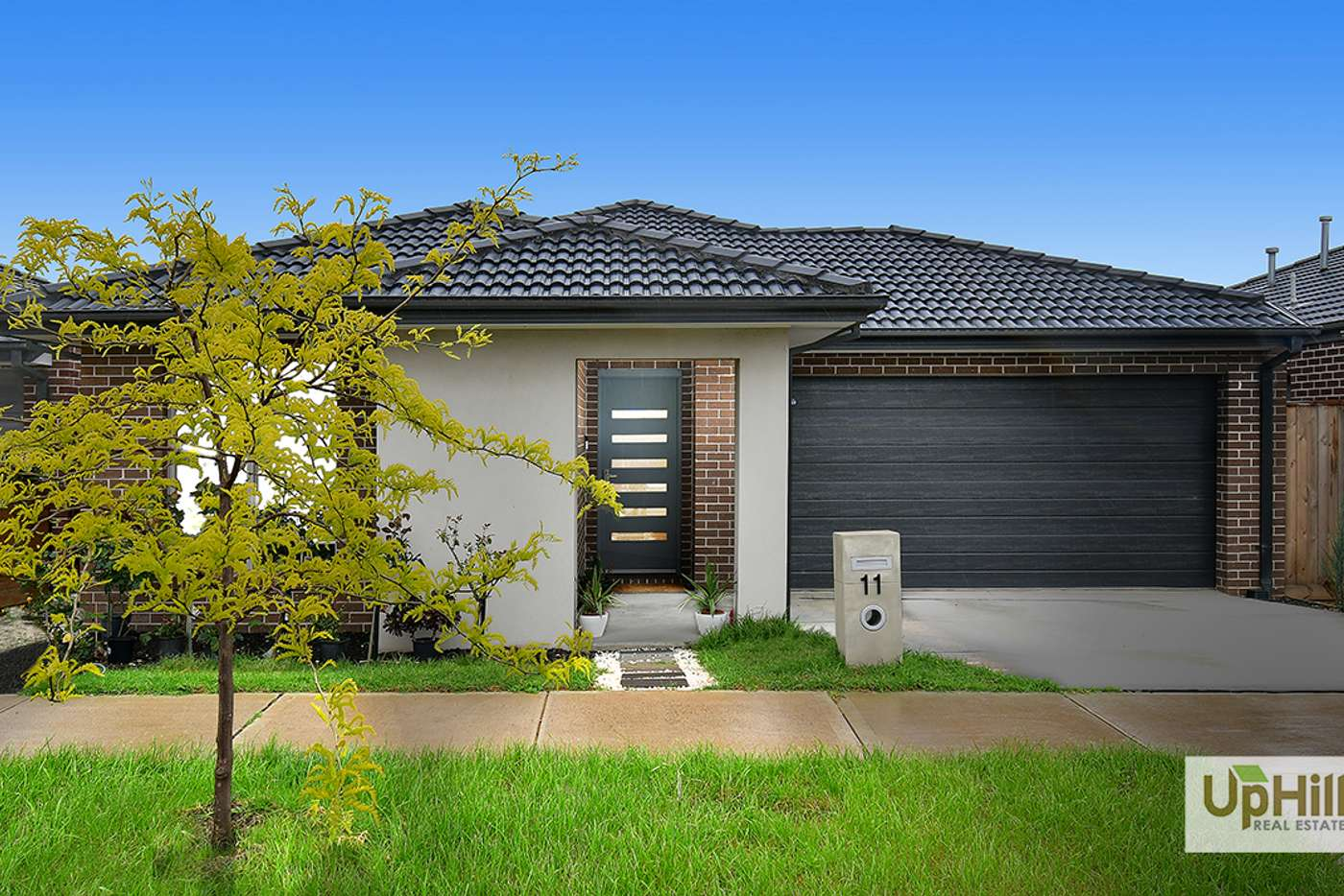 Main view of Homely house listing, 11 Great Banjo Street, Clyde North VIC 3978