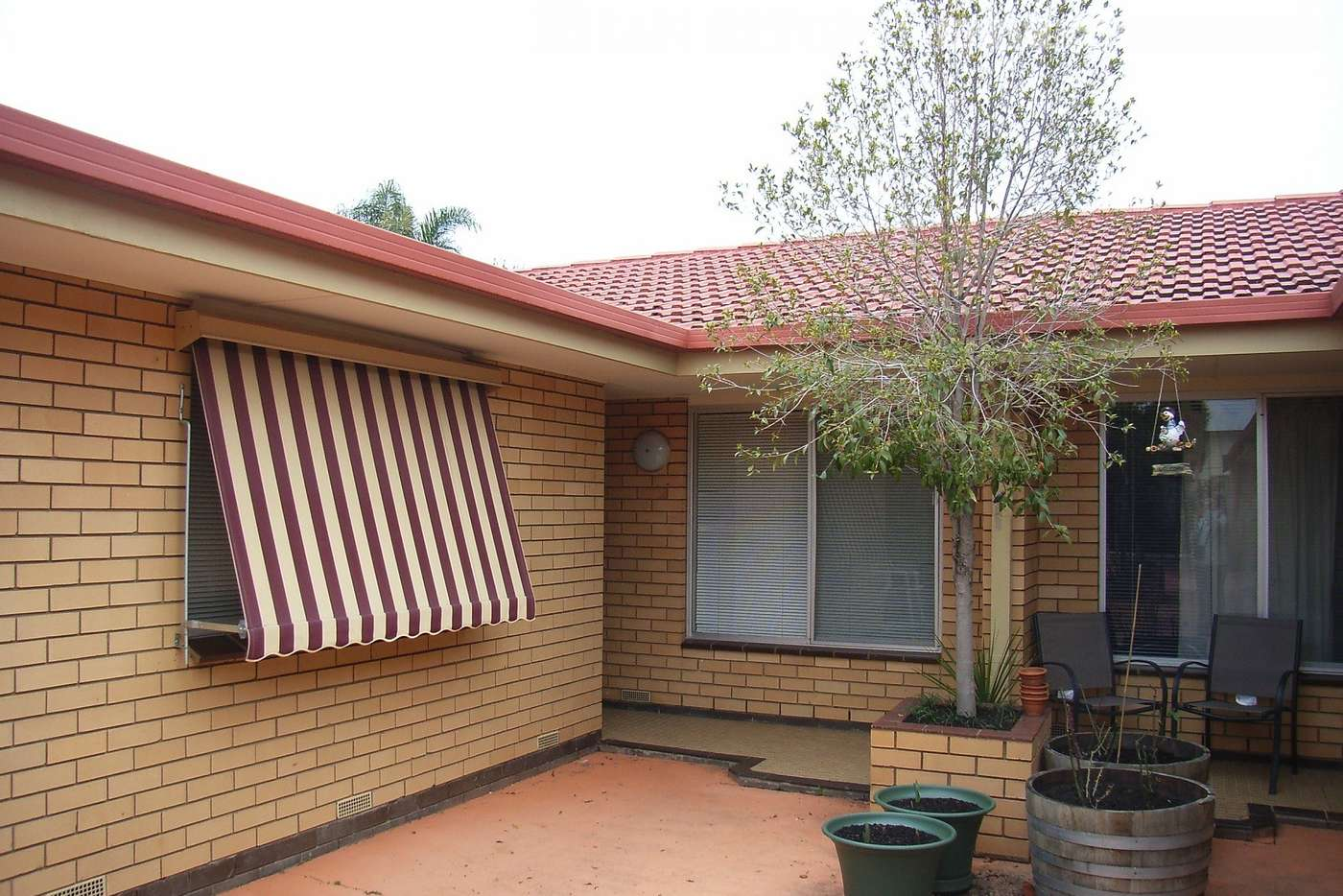 Main view of Homely unit listing, 3/431 Douglas Road, Lavington NSW 2641