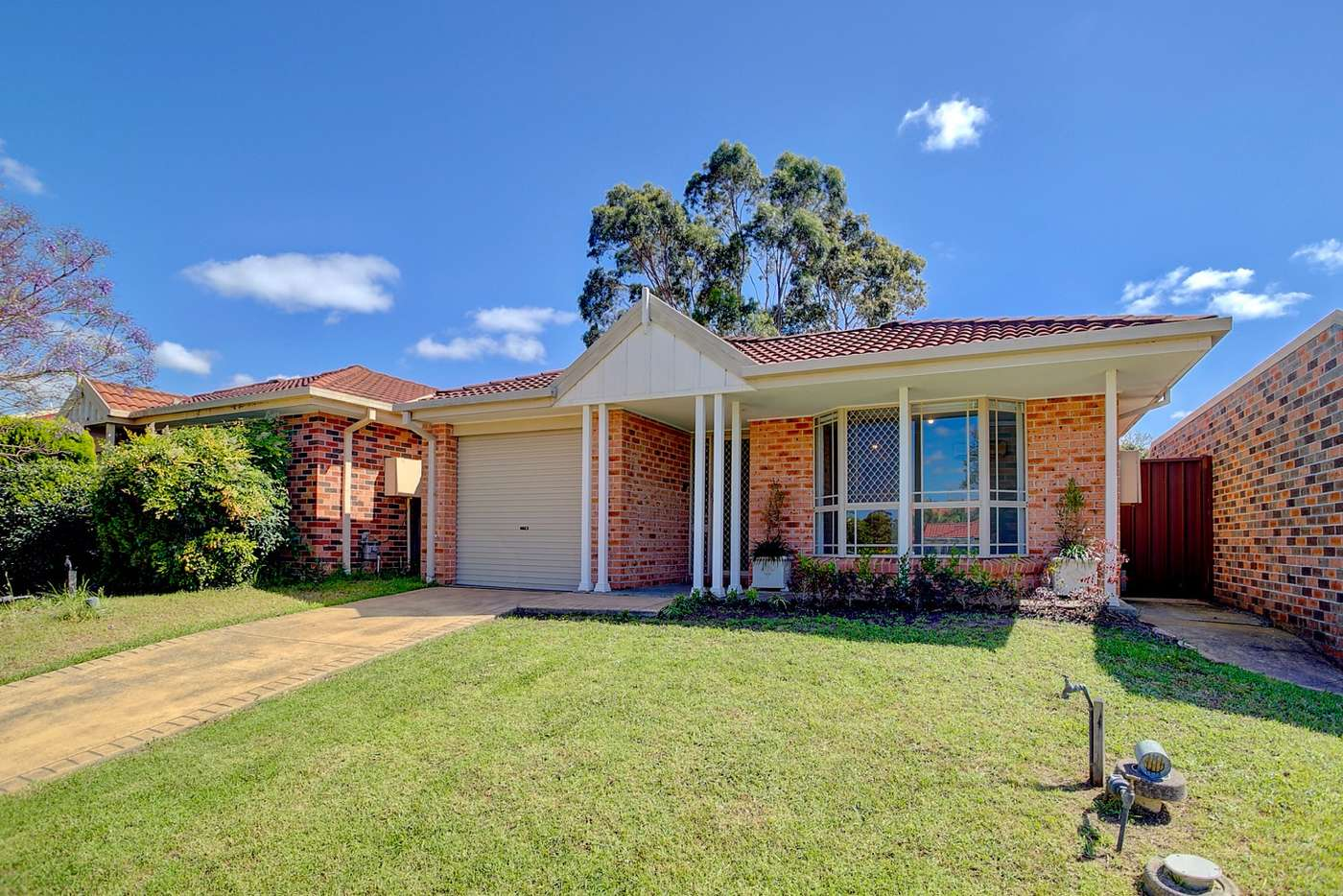 Main view of Homely house listing, 9 Tristania Grove, Greenacre NSW 2190