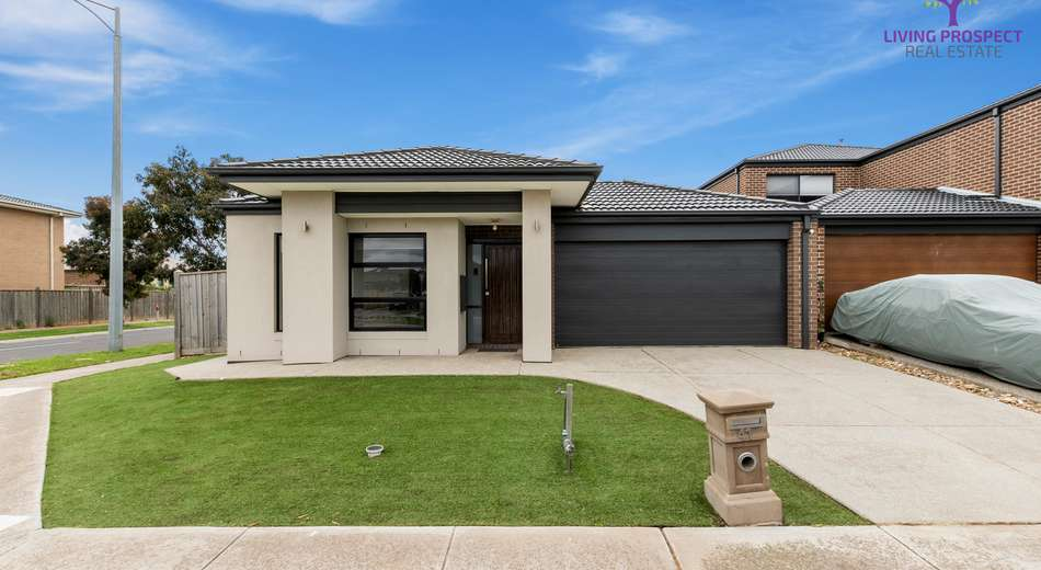 41 Seagrass Crescent, Point Cook VIC 3030