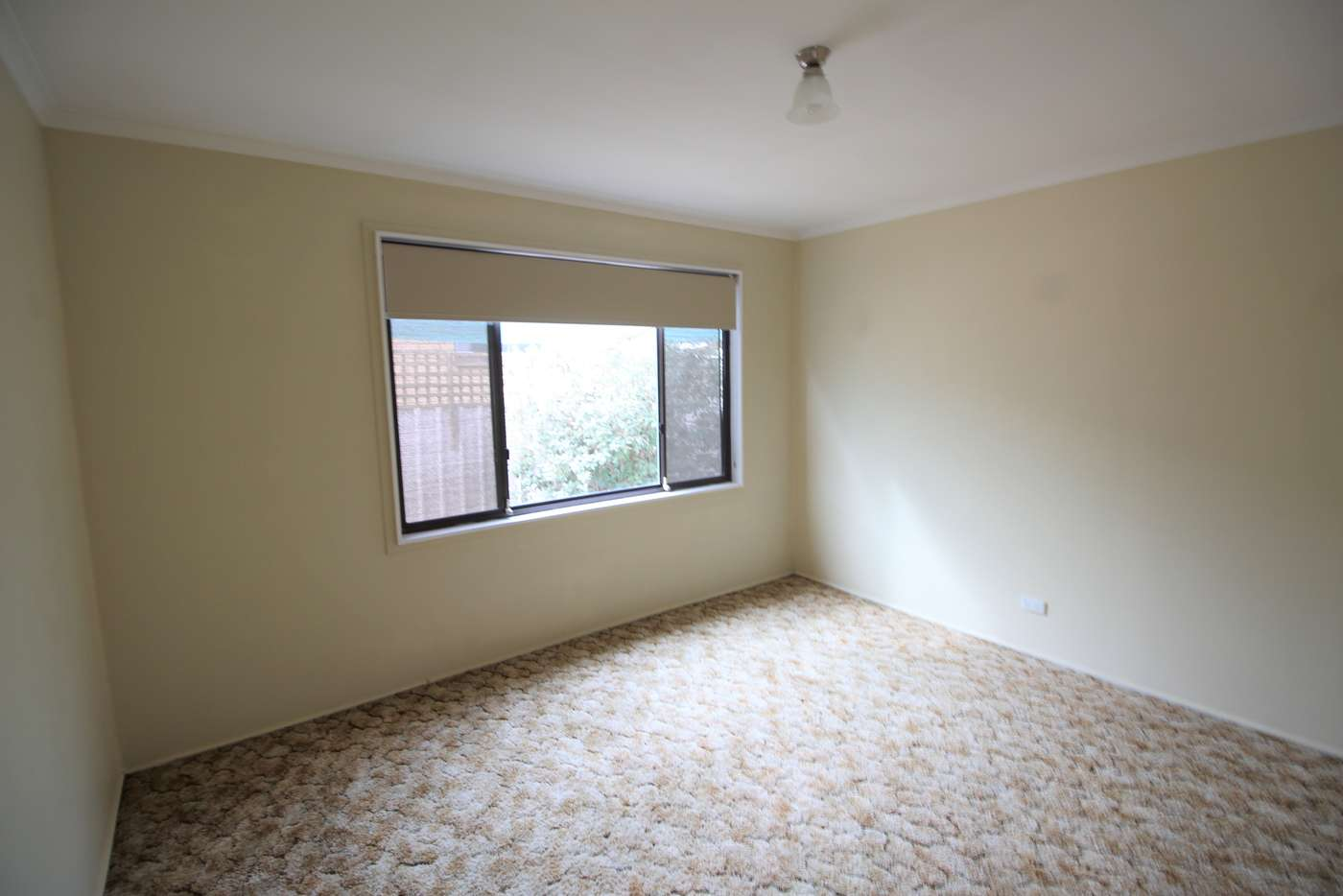 Seventh view of Homely house listing, 308 Dick Road, Lavington NSW 2641