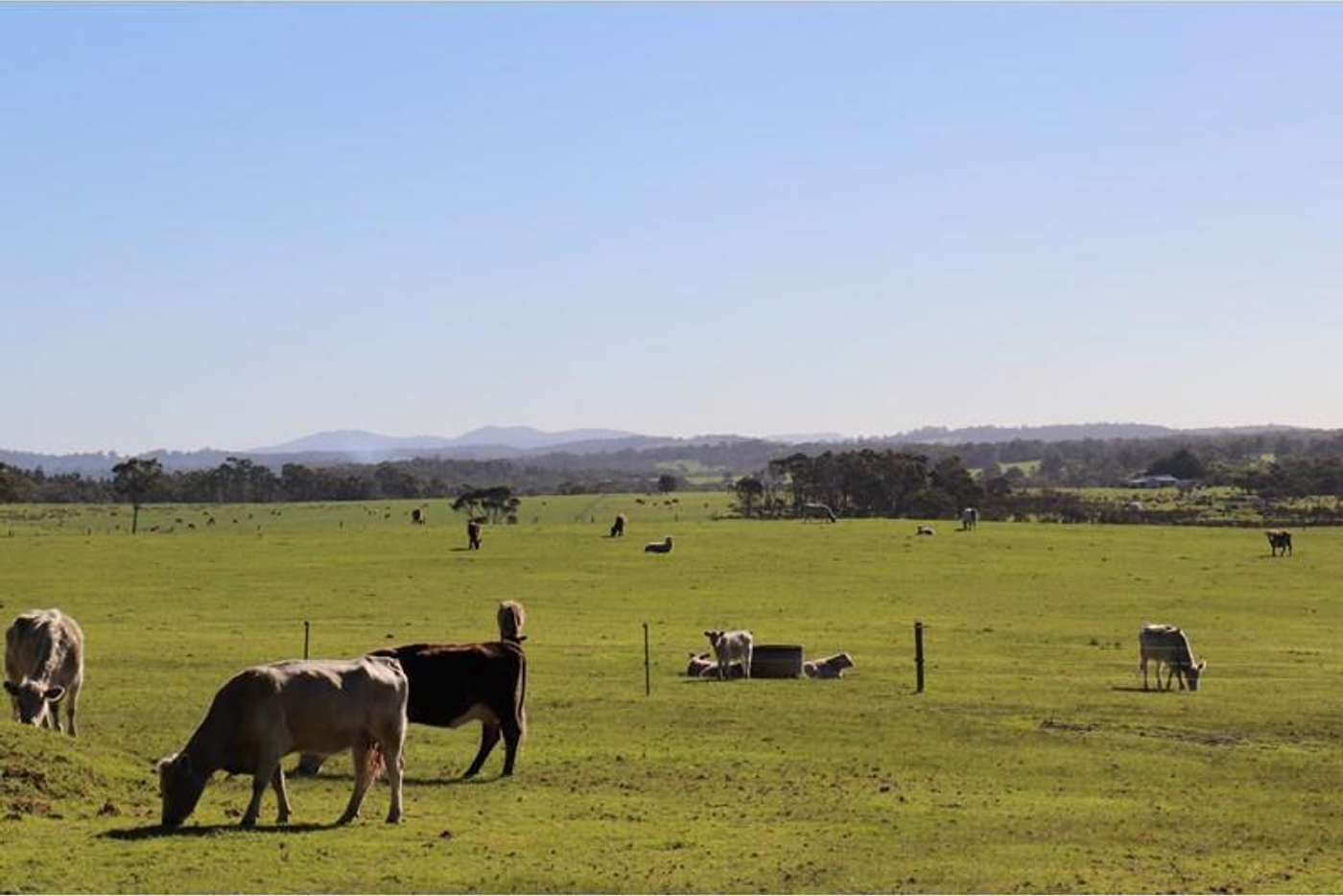 Main view of Homely ruralOther listing, 71 Gardener Road, Denmark WA 6333