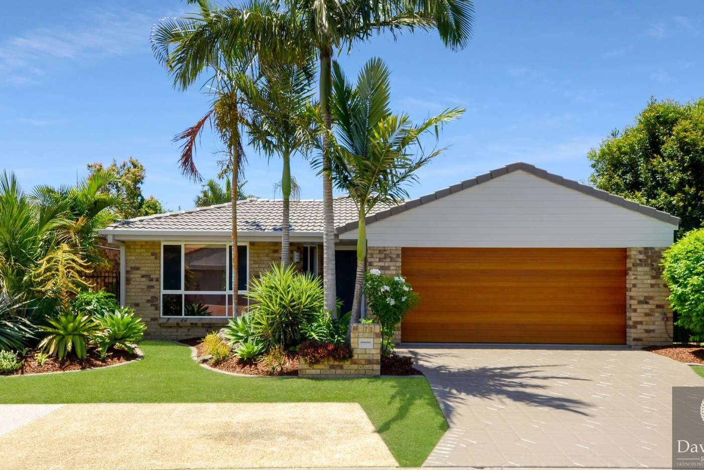 Main view of Homely house listing, 71 Numbat Court East, Coombabah QLD 4216