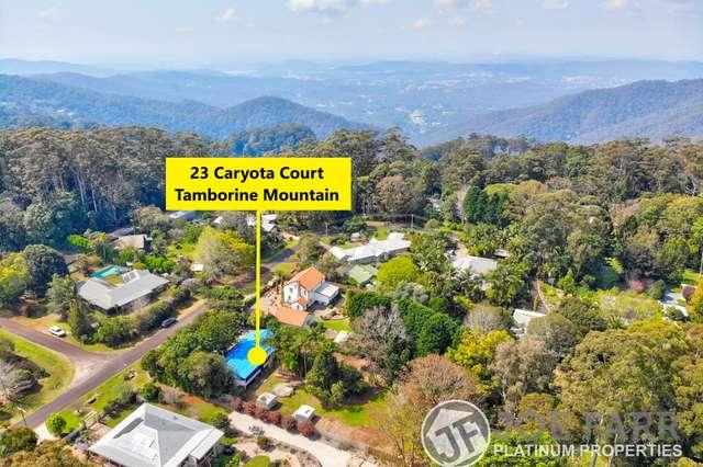 23 Caryota Court, Tamborine Mountain QLD 4272