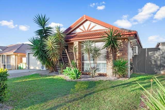 20 Middleton Court, Alexandra Hills QLD 4161