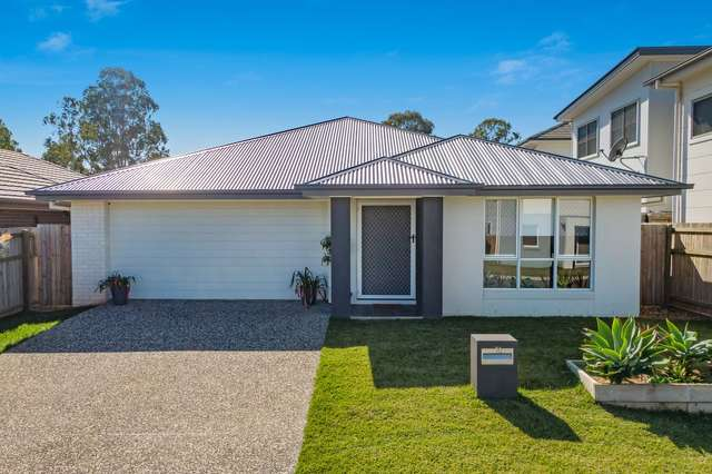 16 Shoalwater Street, Thornlands QLD 4164