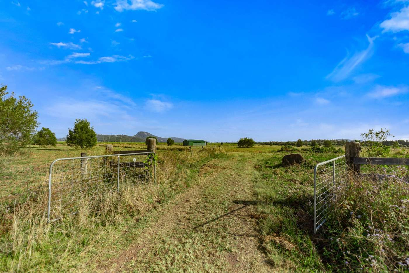 Main view of Homely residentialLand listing, 215 River Road, Maroochy River QLD 4561