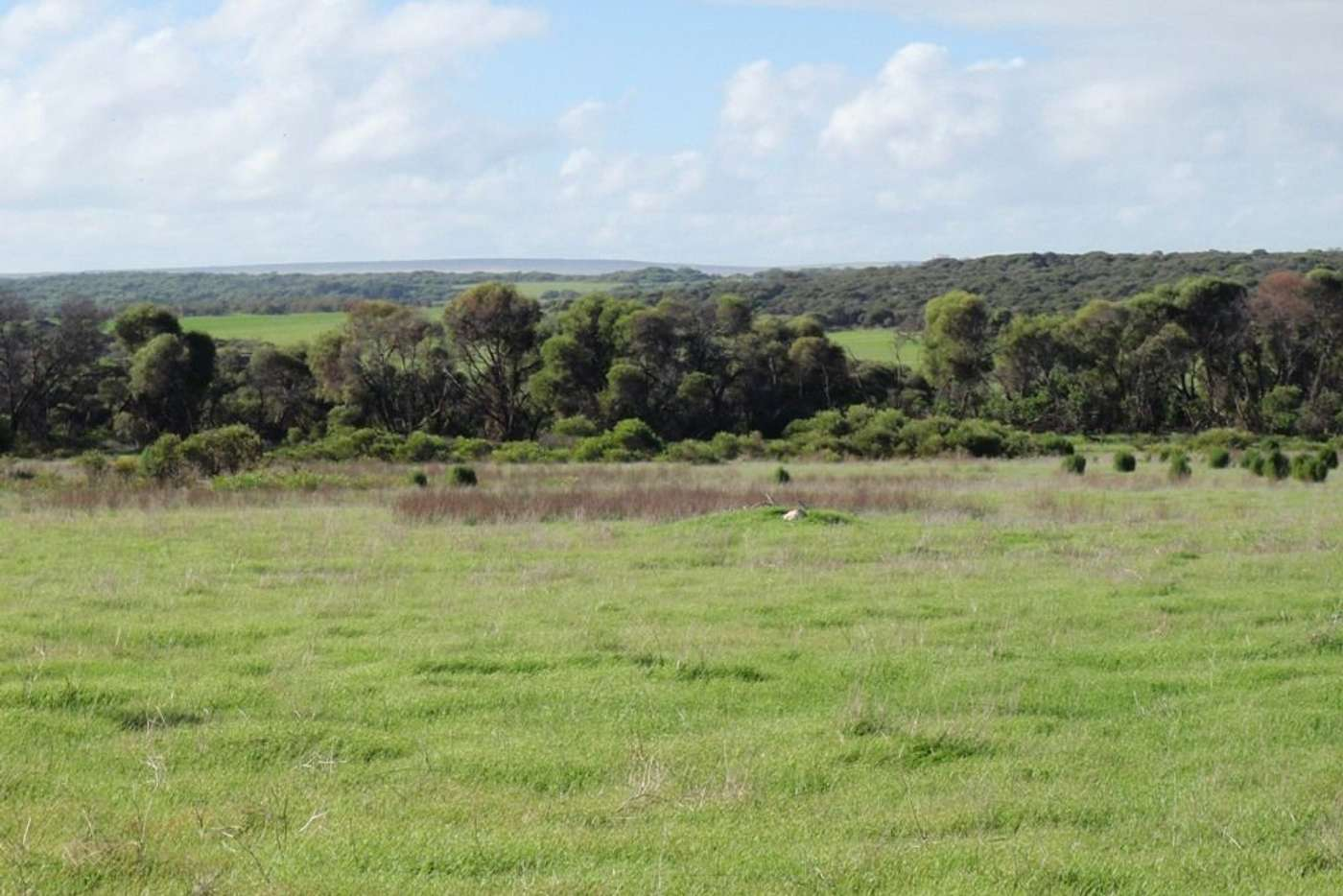 Seventh view of Homely ruralOther listing, Lot 28 Brand Highway, Bookara WA 6525