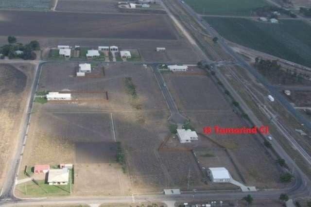 13 Tamarind Close, Ayr QLD 4807