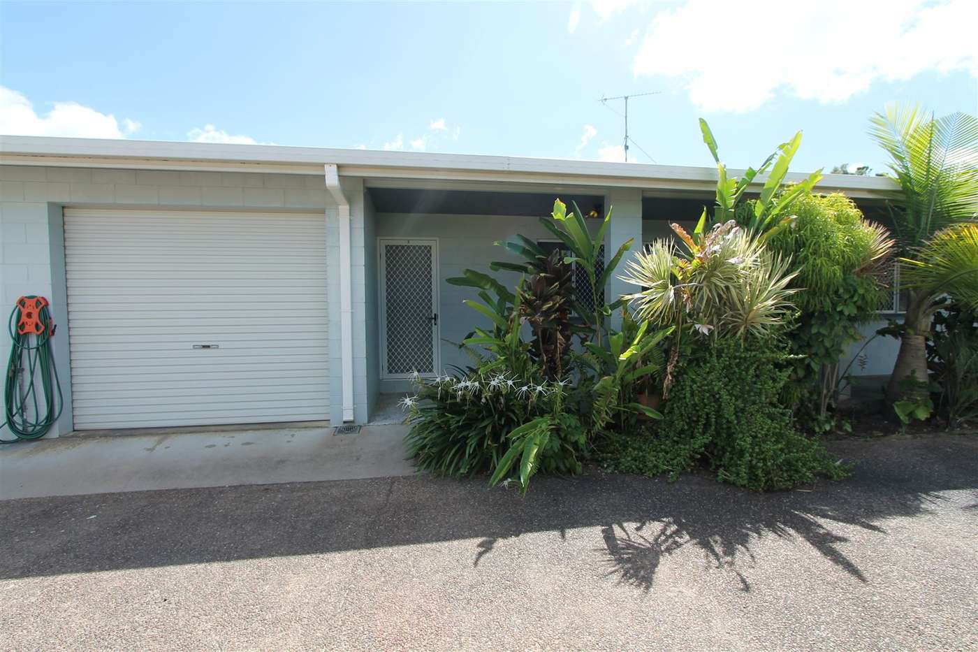 Main view of Homely house listing, 3/5 Macmillan Street, Ayr, QLD 4807