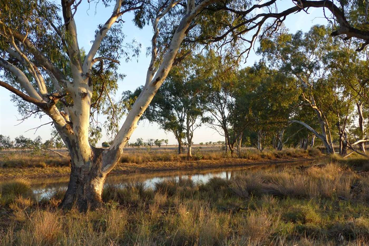 """Sixth view of Homely acreageSemiRural listing, . """"The Bluff"""", Roma QLD 4455"""