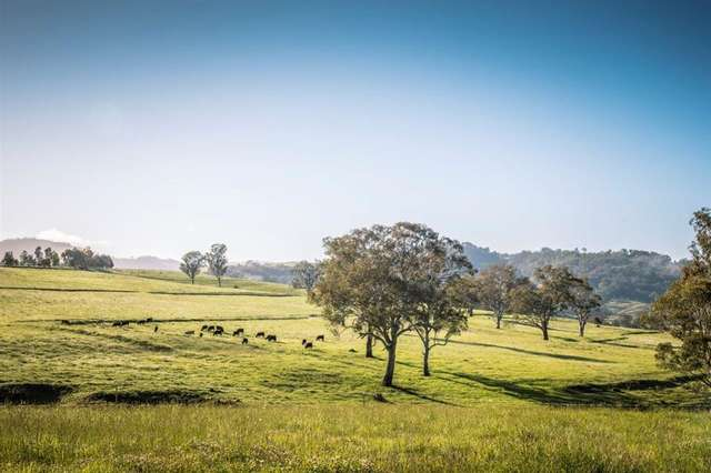 . 'Lincoln Farm' Timor Rd, Blandford NSW 2338