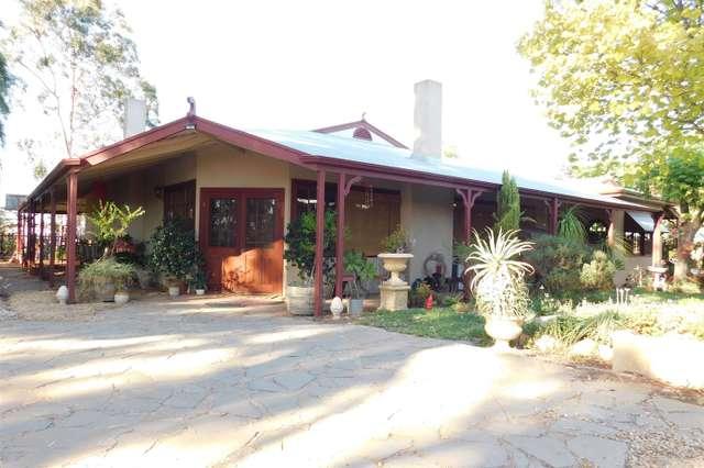 94 Thelma Road, Barmera SA 5345