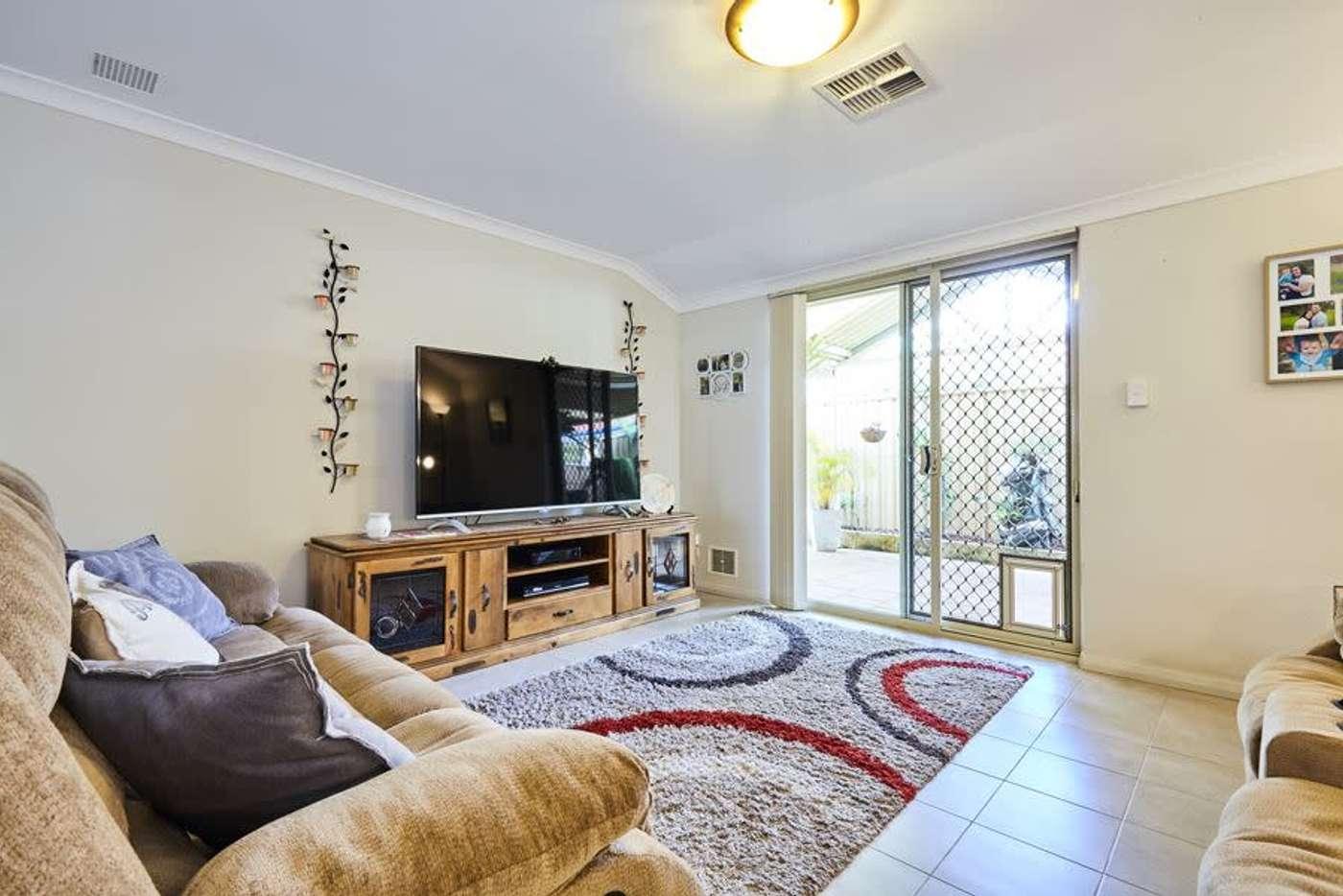 Seventh view of Homely house listing, 38 Senecio Lane, Beeliar WA 6164