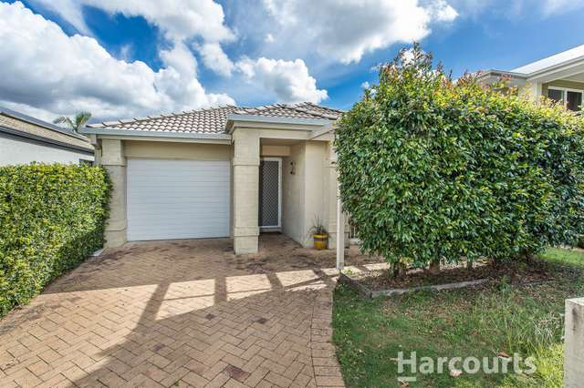 7 Wader Street, North Lakes QLD 4509