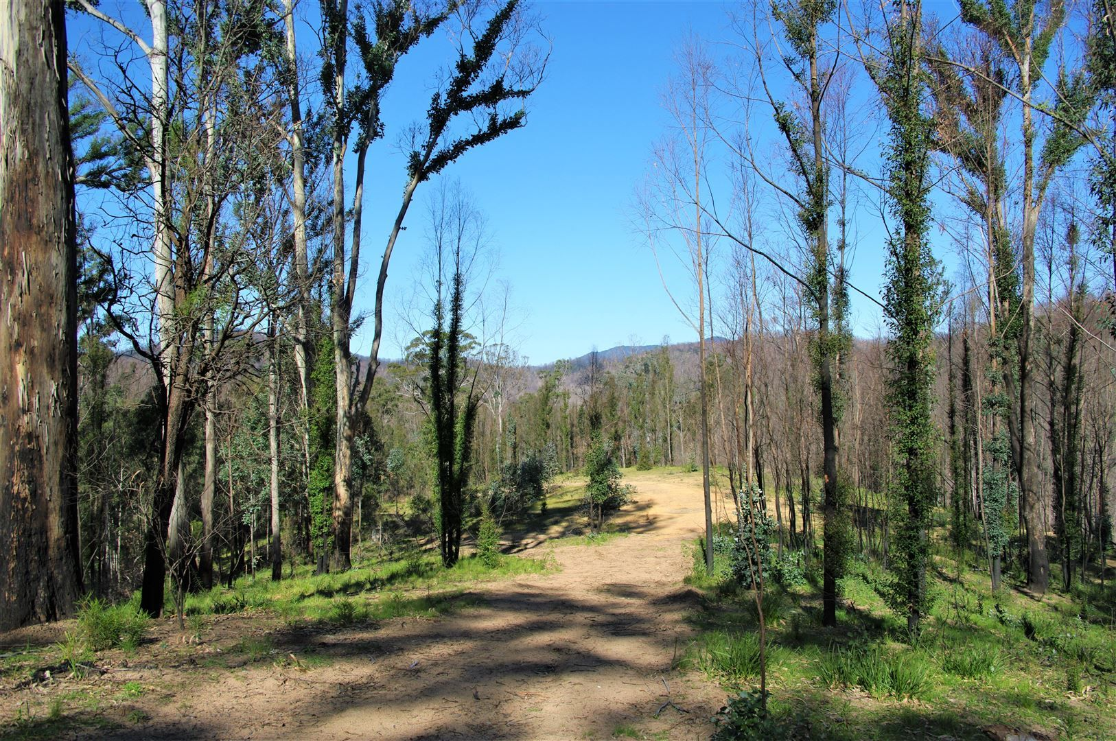 Lot 380 New Station Creek Road