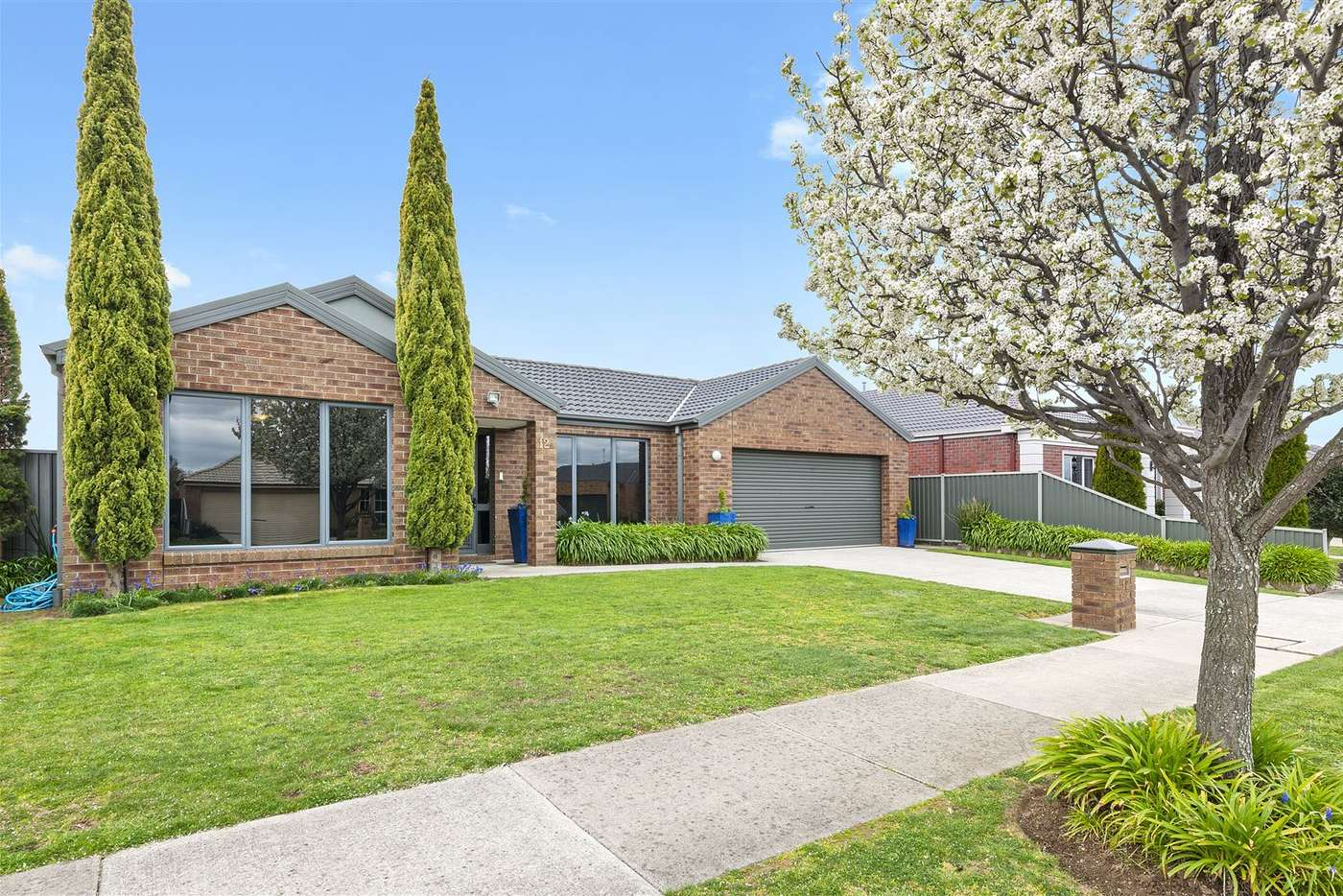 Main view of Homely house listing, 12 Nimble Drive, Delacombe VIC 3356