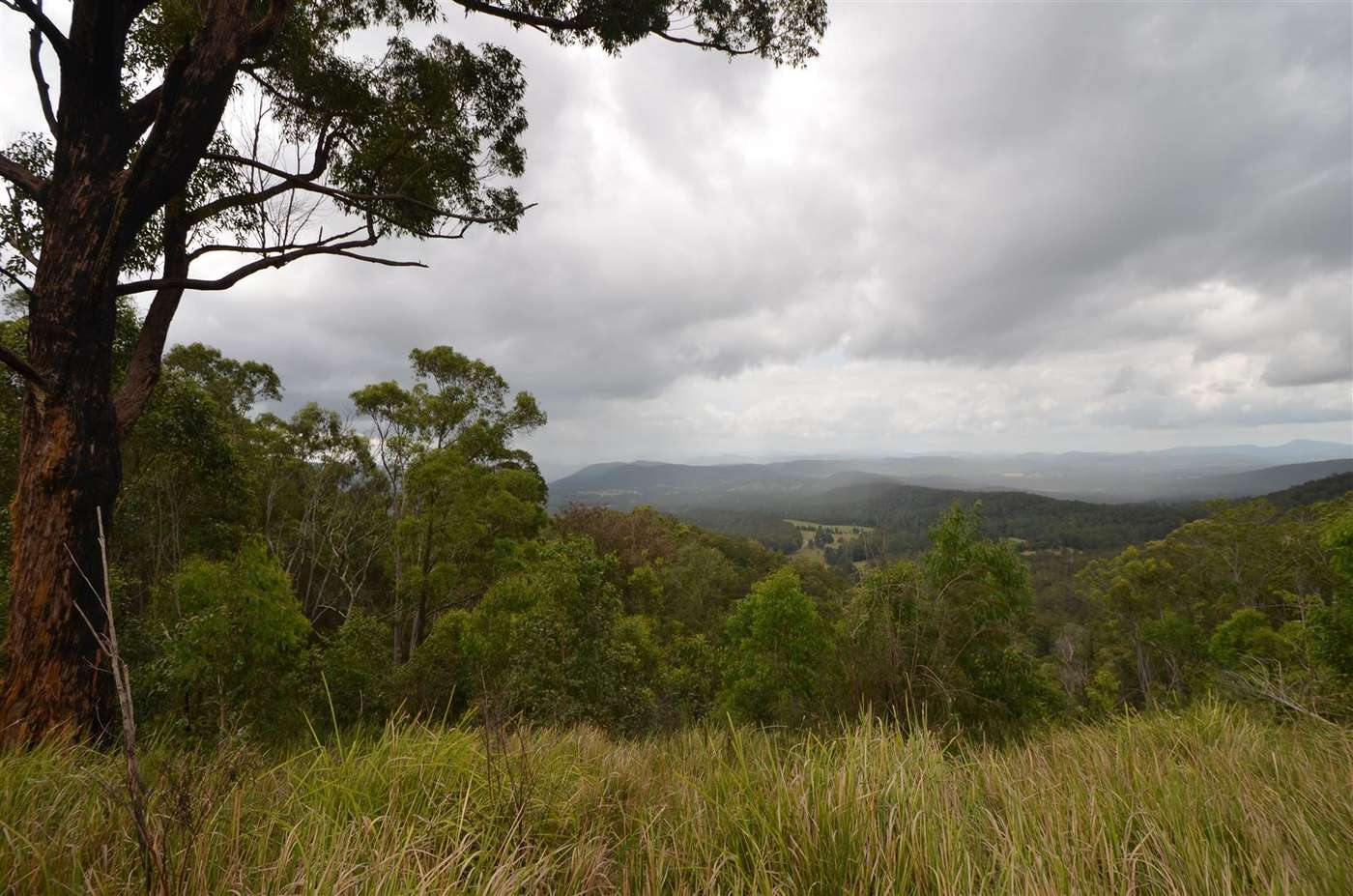 Main view of Homely  listing, Lot 198 Cold Nob Road, Byabarra, NSW 2446