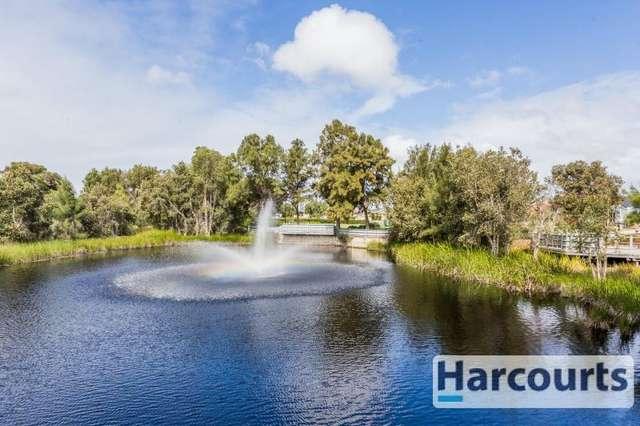 15 Serenity Pwy, Hammond Park WA 6164